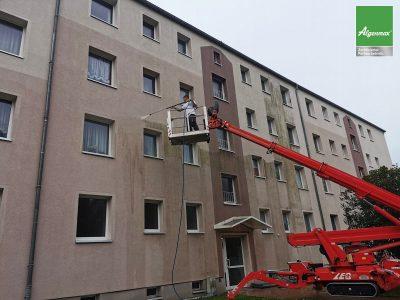 Görlitz, Fassadenwäsche, Fassadenreinigung, Malerarbeiten, Algenmax, Farbnuance, Renovierung, Fassade-2