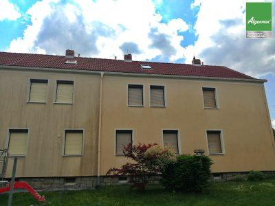 Obergurig,Fassadenwäsche,Fassadenreinigung, Renovierung, Malerarbeiten, Algenmax, Farbnuance-2
