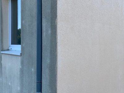 Dresden, Fassadenwäsche, Mehrfamilienhaus, Algenmax, Farbnuance, Renovierung, Fassadenreinigung, Reinigung (7)